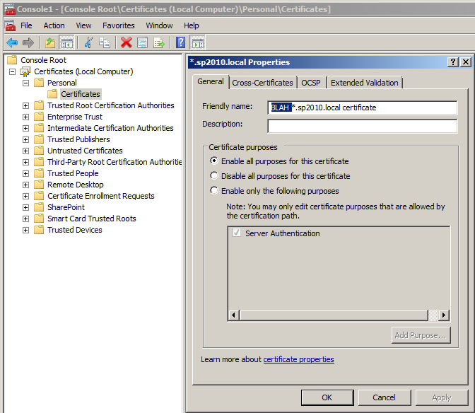 Editing the Host Name field for wildcard SSL certificate